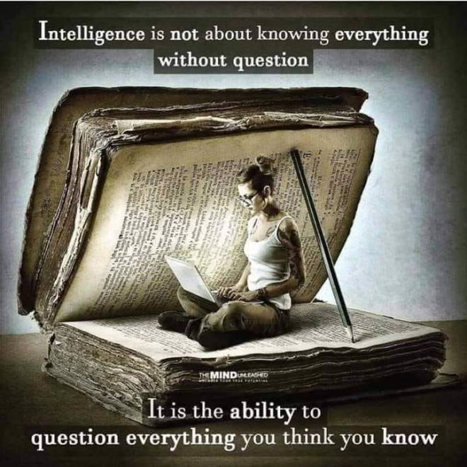 intelligence & curiosity