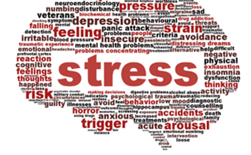 Managing Your Stress: It's a process, not an event, and the genius will be in thedetails.