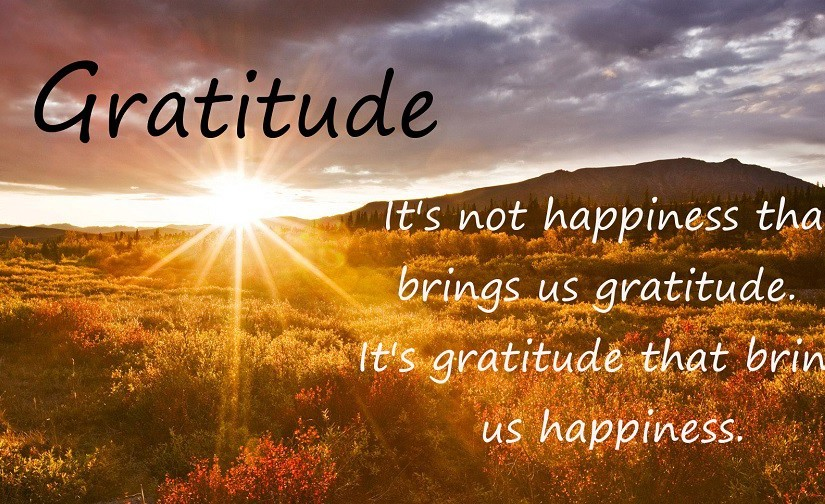 """Thankfulness expressed is gratitude shared & love declared. """"It's too late when wedie."""""""