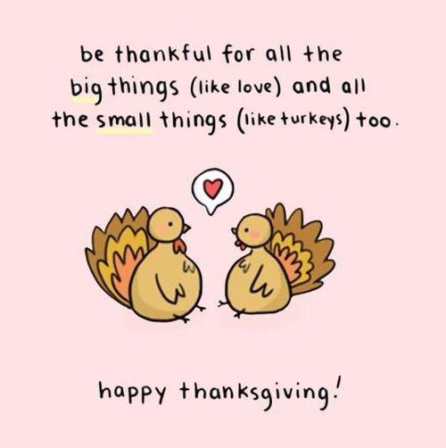 Thankful be - cute turkeys