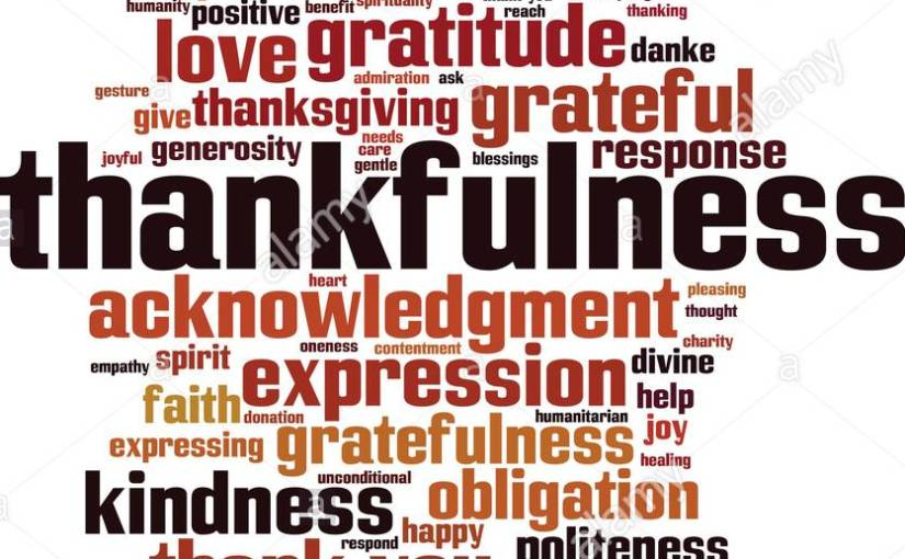 I AM THANKFUL…… Think about making thankfulness part of your authentic self; if it isn'talready